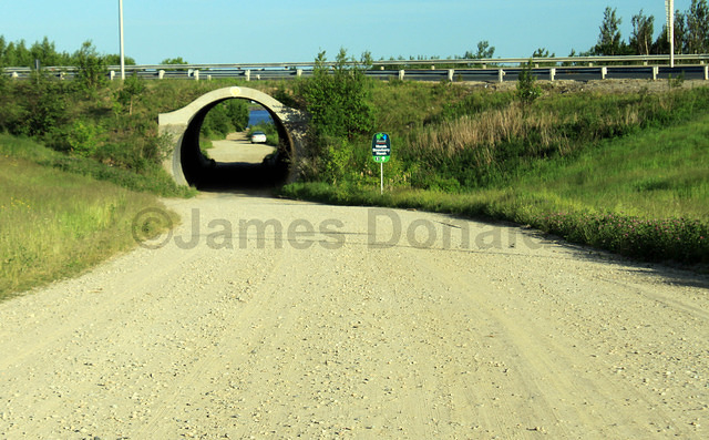 Tunnel to Strawberry Marsh