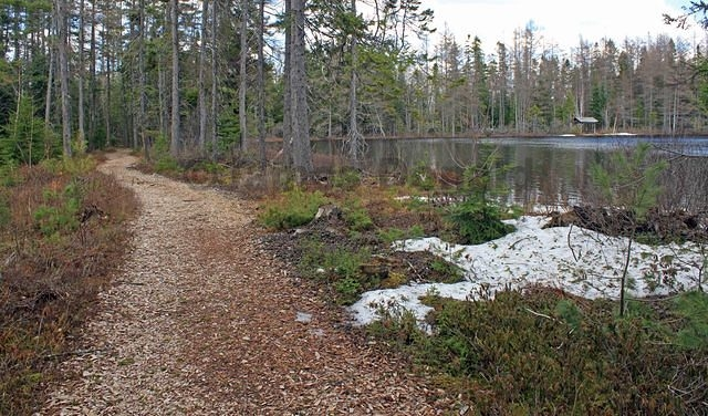 Trail Along the Lake