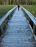 Long Boardwalk