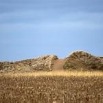 L'Aboiteau Dunes