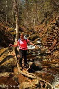 Third Vault Falls Trail