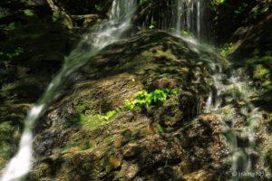 Wolf Brook Falls
