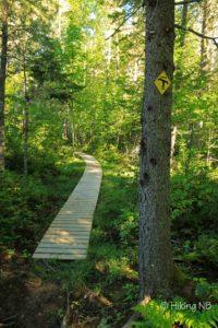 Portage Trail