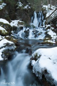 Dickson Falls in Winter