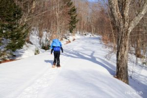 Snowshoeing the Maple Grove Trail
