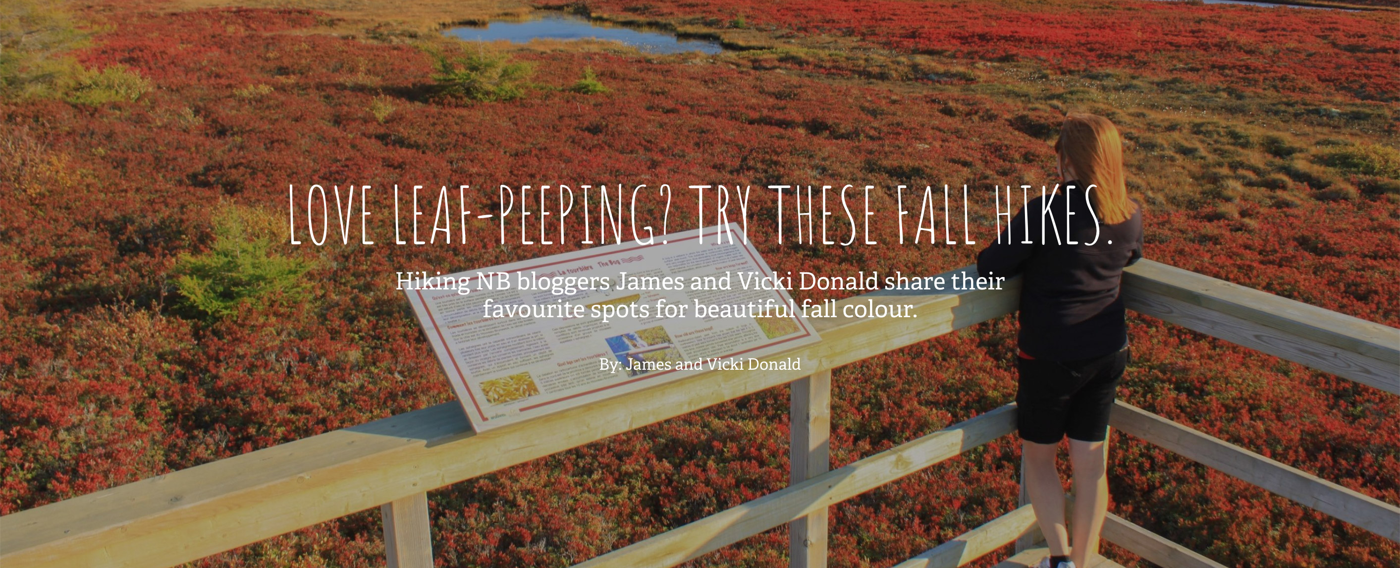 Leaf Peeping Hikes Blog Post